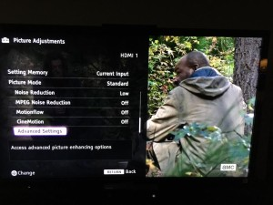 Sony Bravia TV Settings